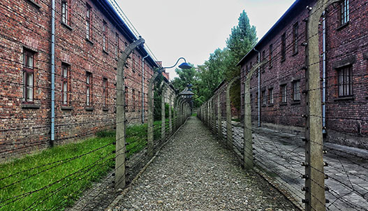 walkway through two buildings with tall barbwire fence on both sides